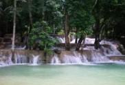 BA_Laos_Rainforest